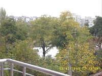 S2500028.jpg