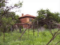 Двуетажна къща Пазарджишки