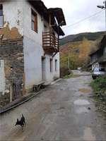 Урегулиран парцел село Косово, област Пловдив