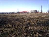 Земеделска земя Костинброд